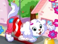 Game Doggy Dressup. Play online