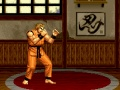 Game Fighting artea. Play online